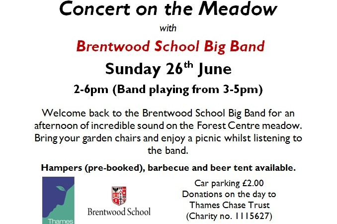 Concert on the Meadow poster final version picture
