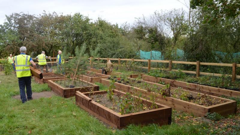 27-09-16-tree-nursery-9